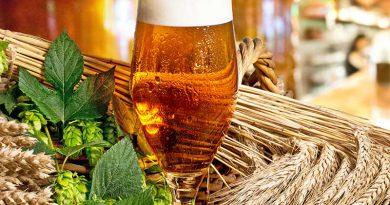 Bier aus der Brauerei.