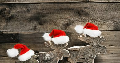 Rentiere mit Weihnachts Dekoration.