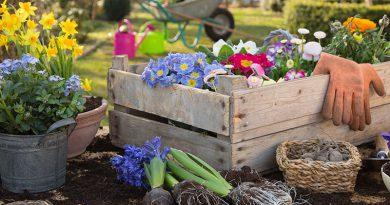 Gartenarbeit, Blumen und Erde.