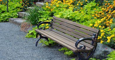 Garten- und Landschaftsbau, Baumpflege.