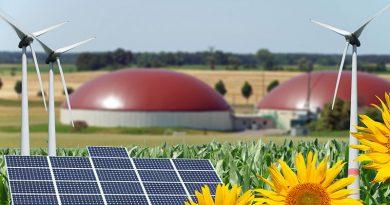 Informationen zur Energieversorgung für den Bereich Biogas-, Erdgasanlagen und Blockheizkraftwerken mit innovativen Energien wie Holzpellets oder Holzhackschnitzel gibts auf der EnergyDecentral Hannover.