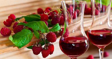 Von Beerenlese bis zum Winzergenossenschaftskongress alles über die Wein- und Saftproduktion.