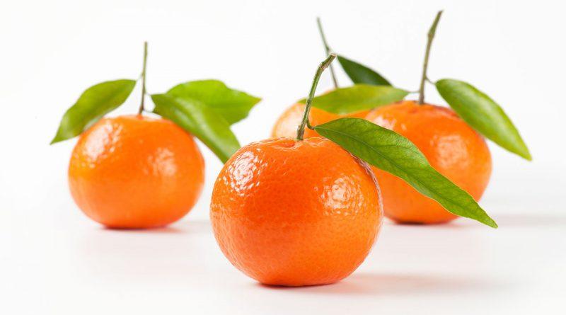 Handel und Transport von Frische-Produkten wie Obst und Gemüse.