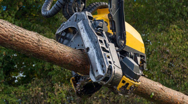 Holzbearbeitungsmaschinen in der Forst- und Holzwirtschaft.