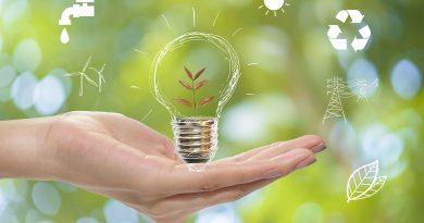 Erneuerbare grüne Energie.