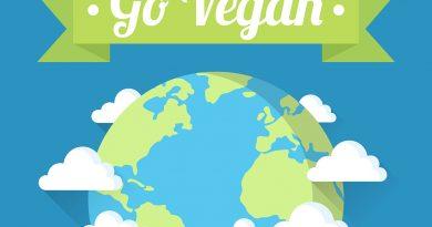 veganfach 2018 – Messe Köln