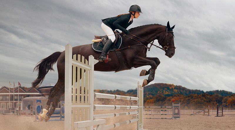 Faszination Pferd 2020 • Messe Nürnberg