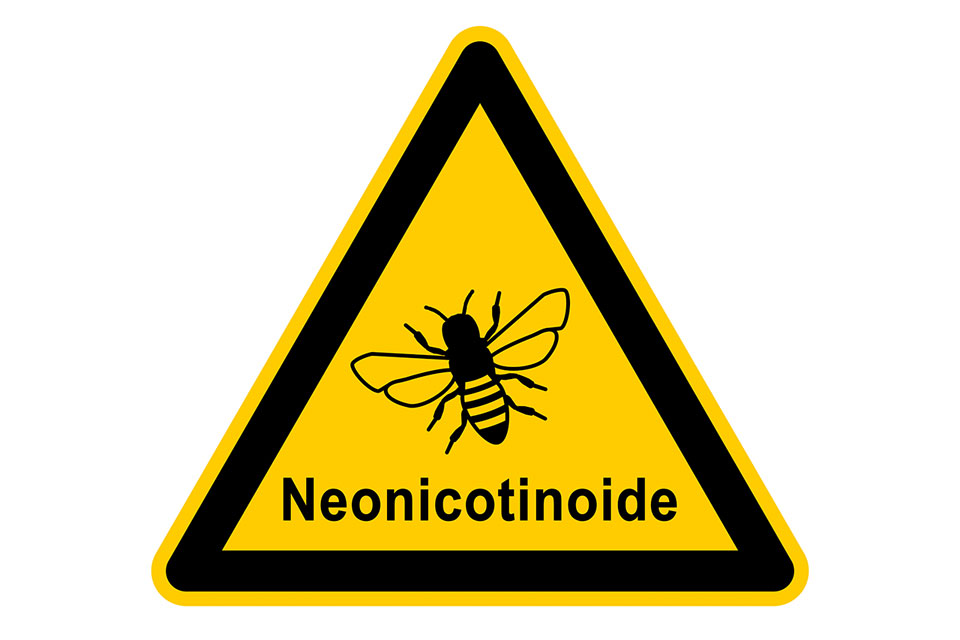 Neonicotinoide Insektengifte beim konventionellen Ackerbau