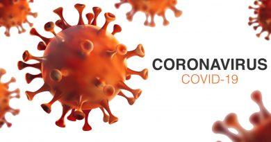 Corona-Virus COVID 19 politisches Versagen